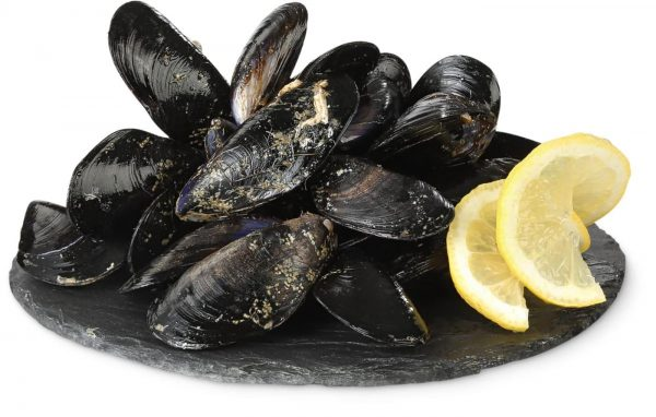 moulesesp