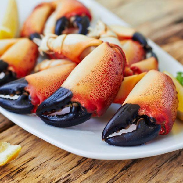 pince-de-crabe-cuit-grosse