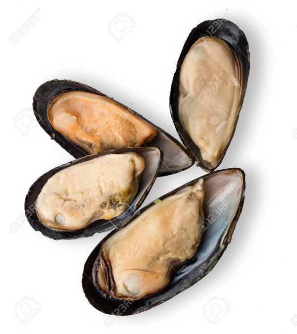 Fresh open mussels isolated on white background. Seafood shellfish in black shells